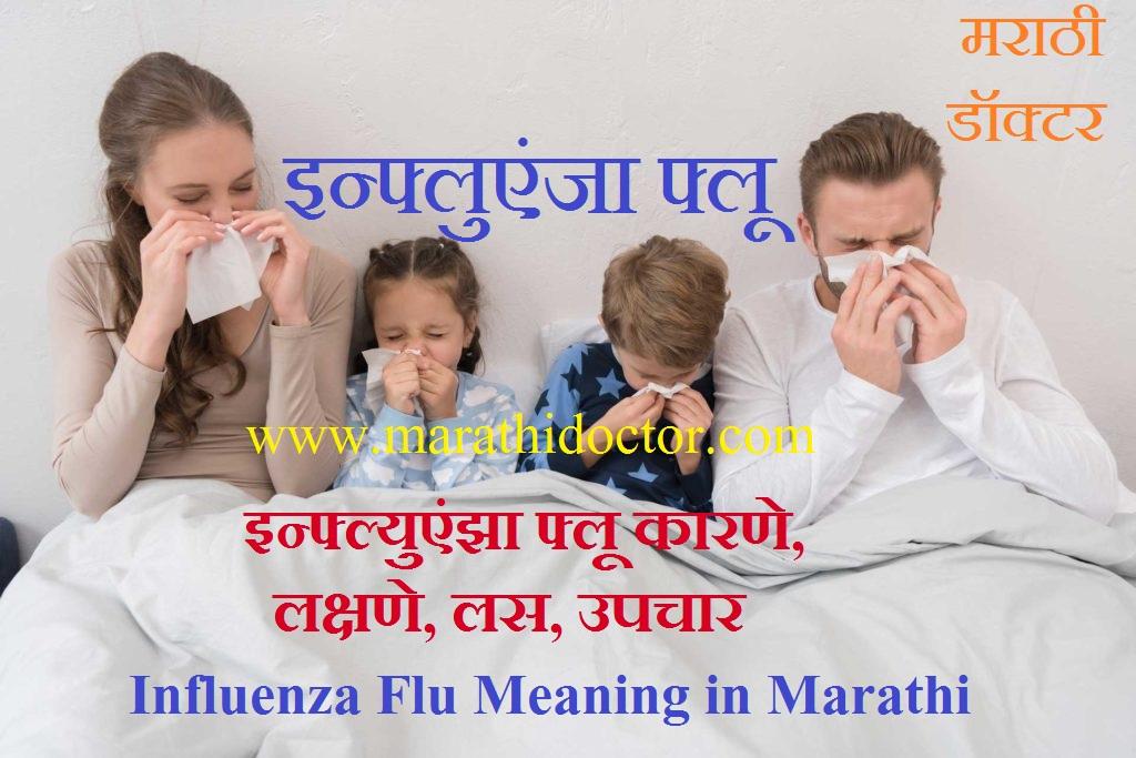 Influenza Flu Meaning in Marathi, Influenza Meaning in Marathi, Flu Meaning in Marathi, Common Cold Meaning in Marathi, Cold and Flu Meaning in Marathi, Viral Flu Meaning in Marathi