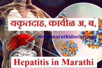 Hepatitis meaning in Marathi, Hepatitis B meaning in Marathi, Jaundice meaning in Marathi, Hepatitis A in Marathi, Hepatitis A meaning in Marathi, हिपेटायटीस ब, हिपेटायटीस अ, kavil b, kavil a,